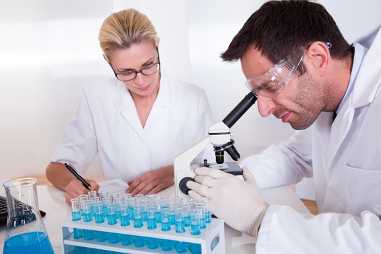 Technicians or medical staff in a laboratory working with test tubes in a rack reading samples under the microscope and recording results